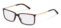 Rodenstock-Bril-R5317-havana, light gold